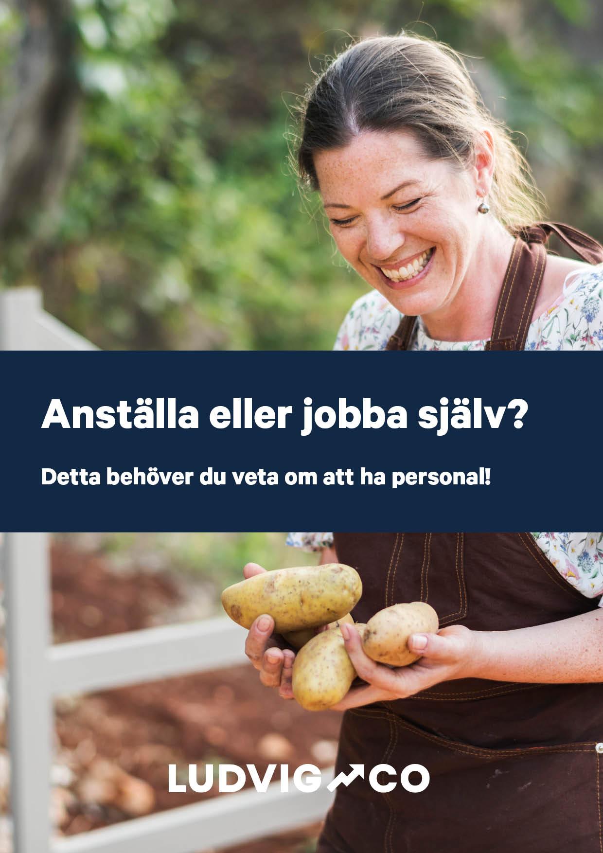 Guide_Anstalla eller jobba sjalv